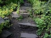 Steinstufen in den Steingärten...